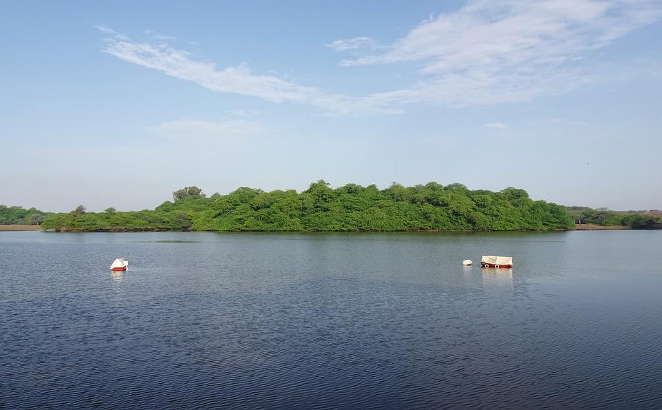 Gajner Lake Bikaner Rajasthan 2020