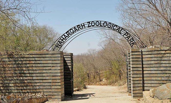 Nahargarh Biological Park Jaipur